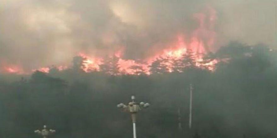 Hatay'daki Habib-i Neccar Dağı'nda orman yangını
