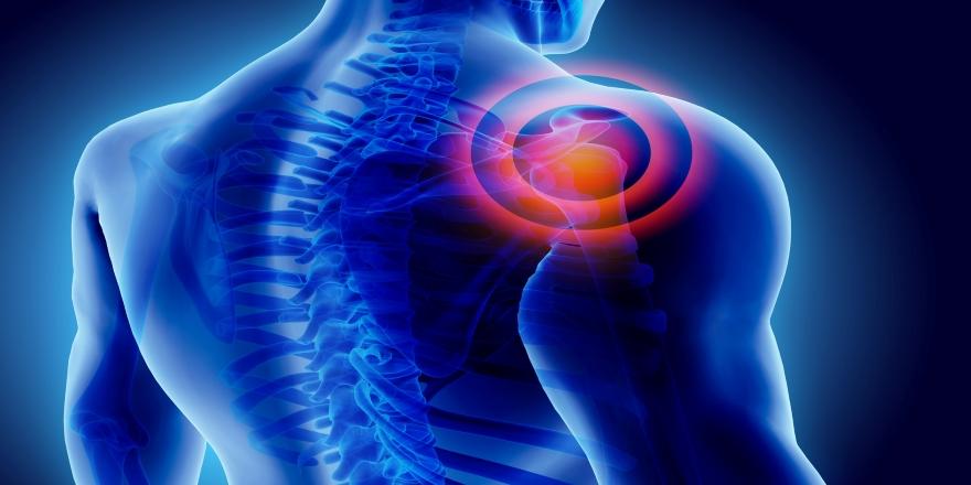 Kemik hastalıkları ve kırık riskini azaltmak için alınması gereken önlemler