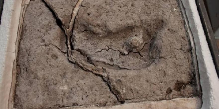 Amerika kıtasındaki en eski ayak izinin Şili'de olduğu kanıtlandı