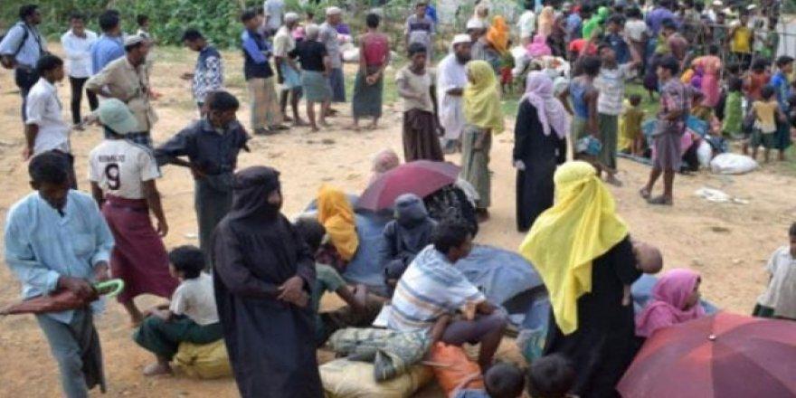 Arakanlı mülteciler insan tacirlerinin elinden kurtarıldı