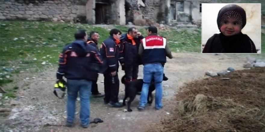 Kars'ta kaybolan 3 yaşındaki çocuk aranıyor