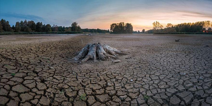 Hindistan'da yaşanan kuraklık çiftçileri intihara sürükledi