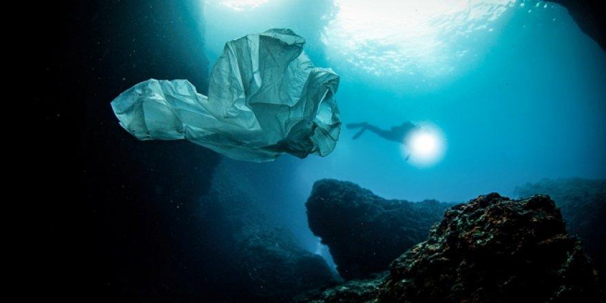 Plastik kirliliğine dikkat çekmek için 450 yıllık canlı yayın başlatıldı