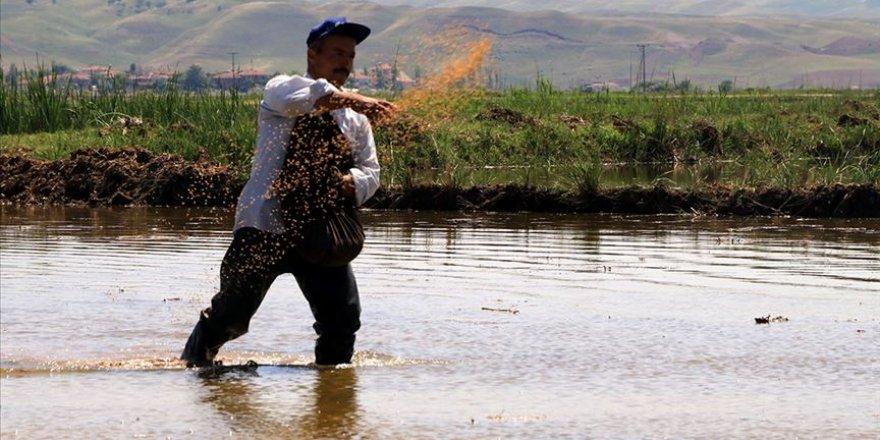 Su dolu tarlalarda oruç tutuyorlar