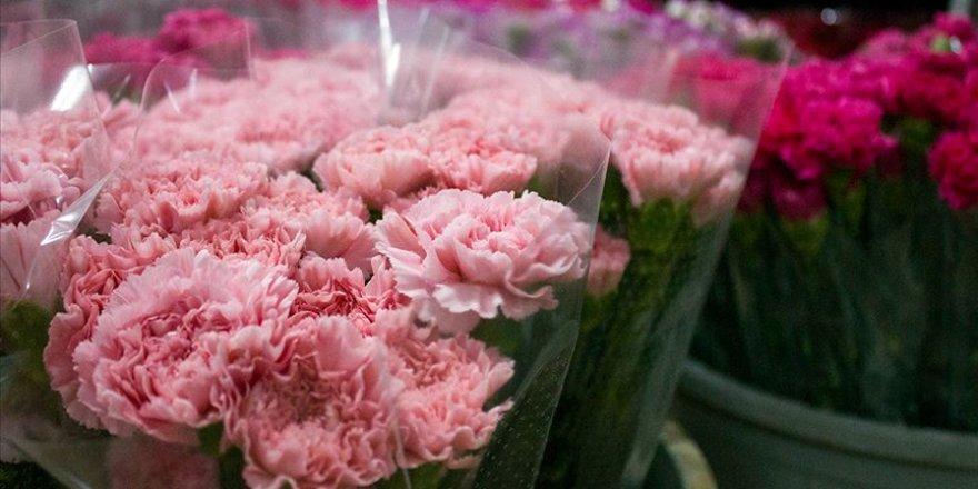 Kesme çiçek sektöründe yüzler gülüyor