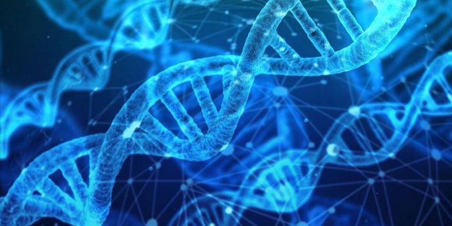 Genç bilim insanlarını, bilimsel araştırma ödülüyle teşvik ediyor