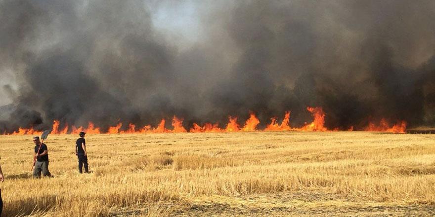 Bir aydır Araplara ait tarım arazilerinde yangınlar çıkıyor