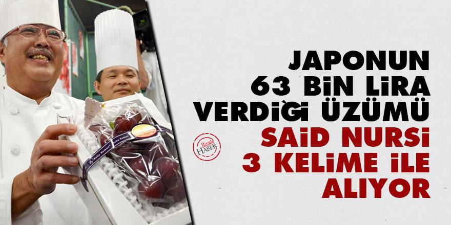 Japonun 63 bin lira verdiği üzümü Said Nursi 3 kelime ile alıyor