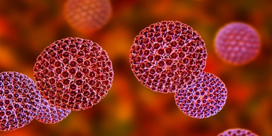Rota virüsü her yıl 600 bin çocuğun ölümüne yol açıyor