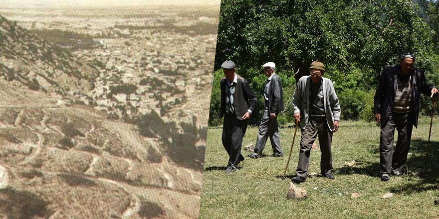 5 kardeş 26 yılda kıraç toprakları ormanlaştırdı