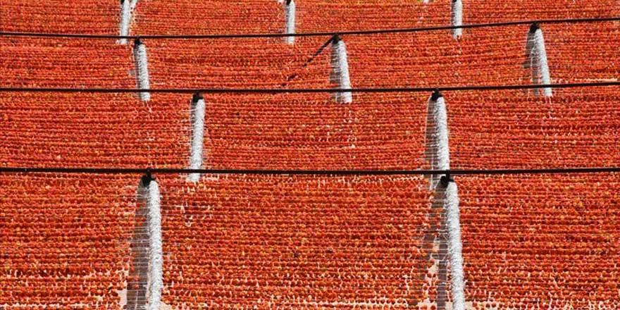 Rengarenk 'Antep kurutmalıklar' tezgahlara asıldı