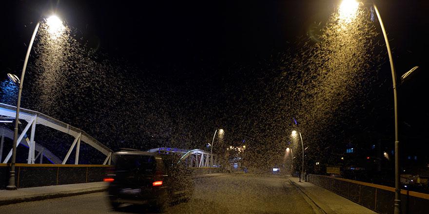 'Bir günlükler'in kar yağışını andıran 'ölüm uçuşu'