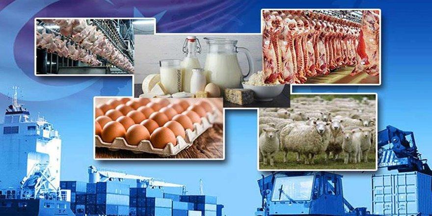 Hayvansal ürünlerin ihracatı arttı