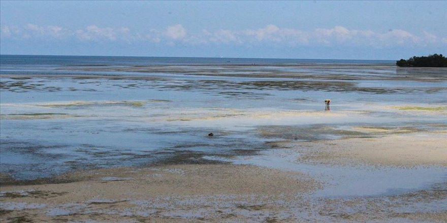 Ekmeğini gelgitten kazananların adası: Zanzibar