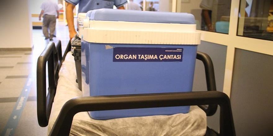 28 bin 568 hasta organ nakli bekliyor