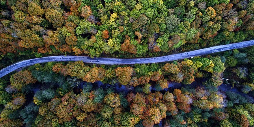 Istranca ormanlarında sonbahar tefekkürü