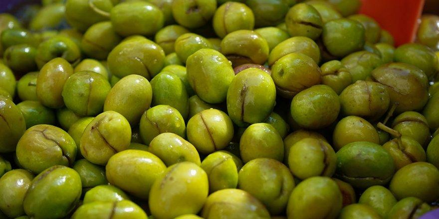 """""""En lezzetli ve uzun ömürlü zeytin yeşil zeytindir"""""""