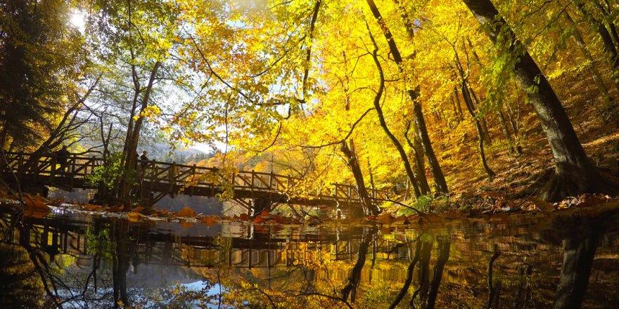 Bolu ve Düzce, sonbahar güzelliğine büründü