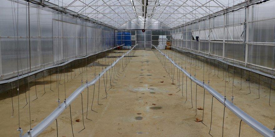 Eski okul binası bilime ve tarıma hizmet edecek