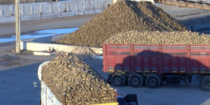 Malatya Şeker Fabrikası'nda 25 yılın rekoru kırıldı