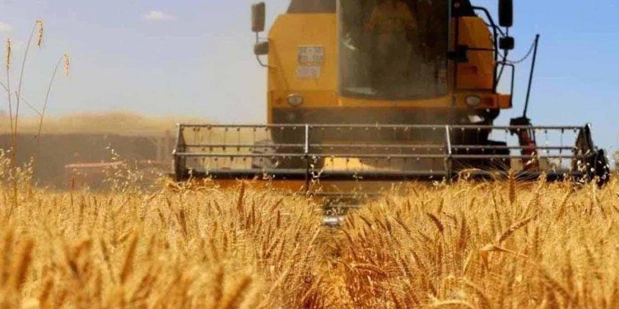 Tarım ve gıda sektörü başarı hikayesi yazdı