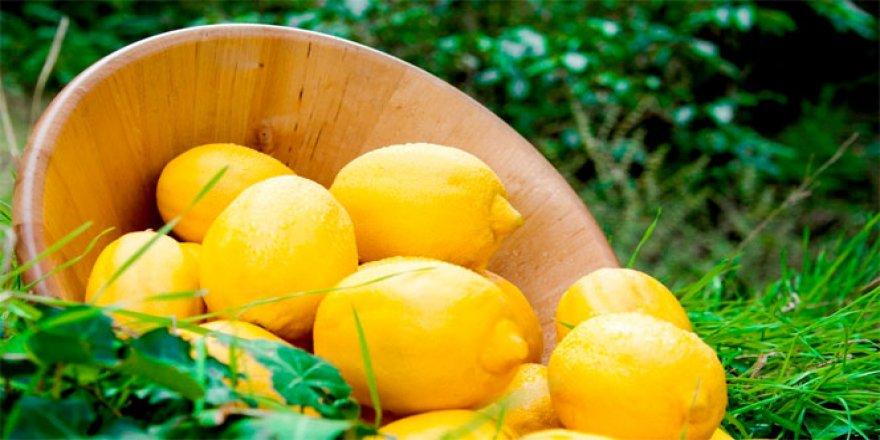 Boğaz ağrısına kainat eczanesinden limon ve ayva reçetesi