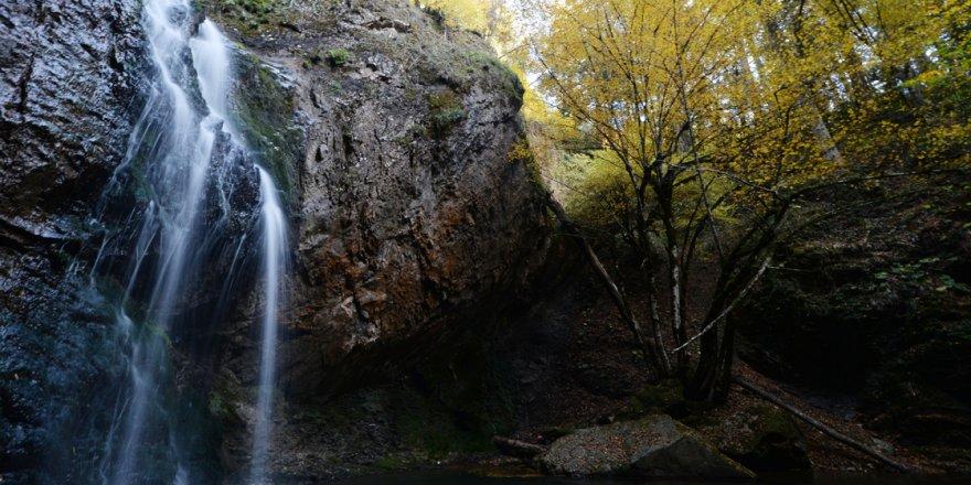 Baklabostan Tabiat Parkı'nda hazan güzelliği