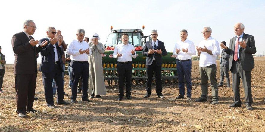 Buğday ekimine Besmele ve dualarla başlandı