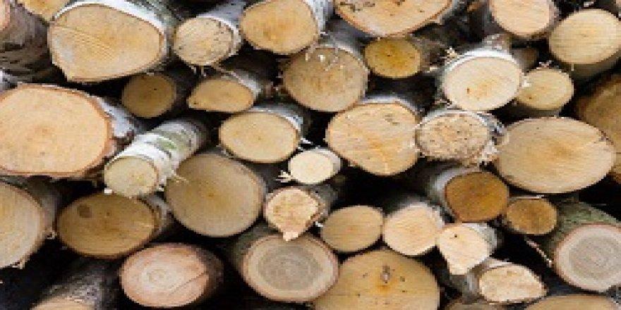 Umut Kervanı'ndan kömür ve odun yardımı