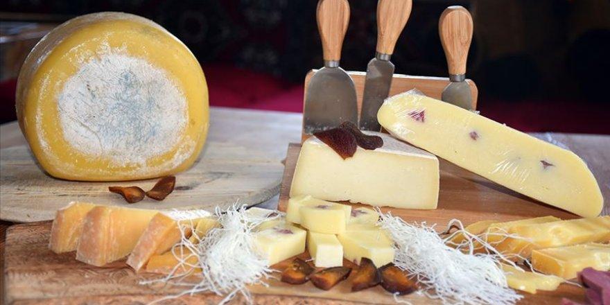 Kaşar peynirinde bol kazanç için 'geleneksel yöntemleri koruyun' önerisi