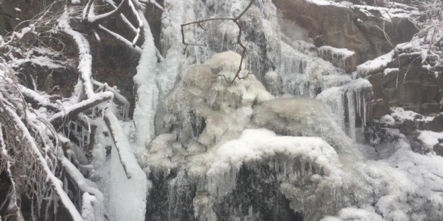 Dondurucu soğukların yaşandığı Sivas'ta şelaleler buz tuttu