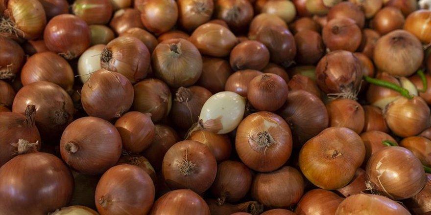 Hindistan'daki soğan krizi Türk üreticilere fırsat oldu