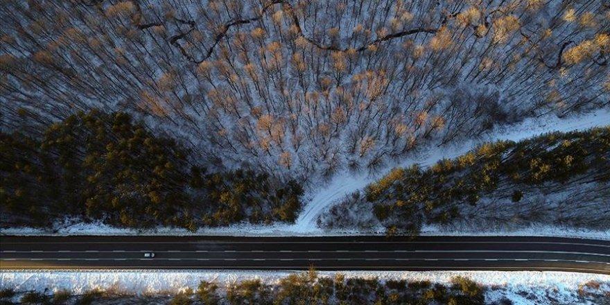 Istranca ormanlarında kış güzelliği