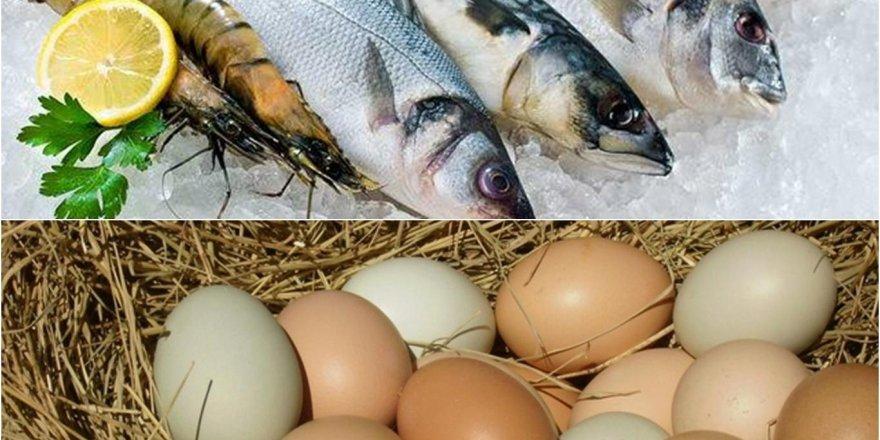 Tavuk yumurtası ve balıkta KDV indirimi