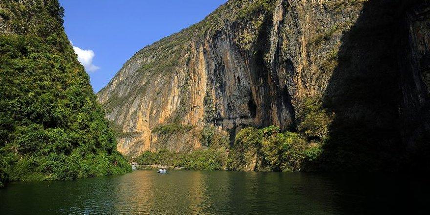 Çin'in Yangzı Nehri'ndeki balık popülasyonu yok olma tehlikesiyle karşı karşıya