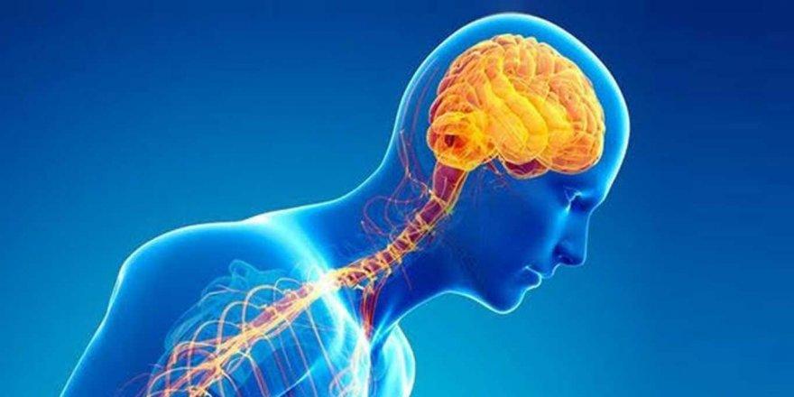 Beyin pili ile hareket bozukluğu gideriliyor