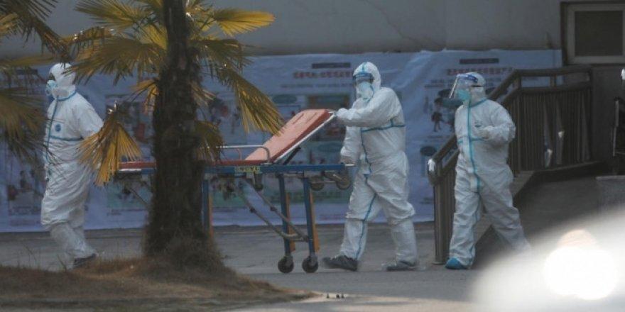 Japonya'da korona virüsü vakası 3'e yükseldi
