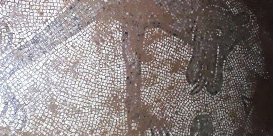 Şanlıurfa'da izinsiz kazıda Roma dönemine ait mozaikler ortaya çıktı