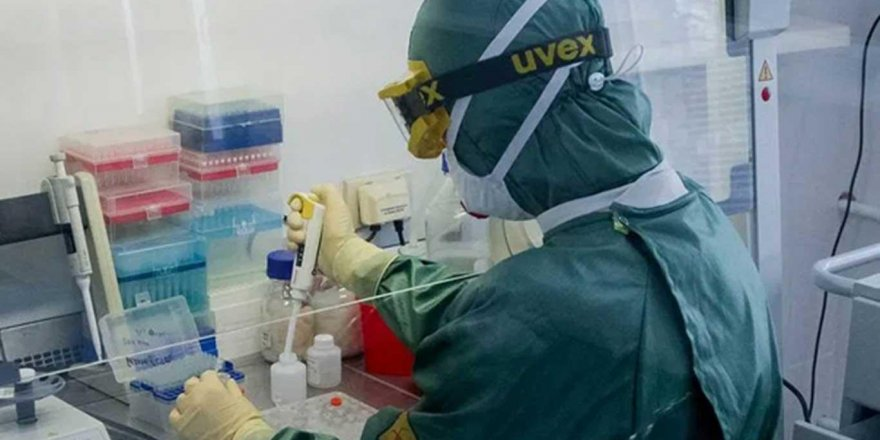 Koronavirüse karşı ülkeler çare arıyor