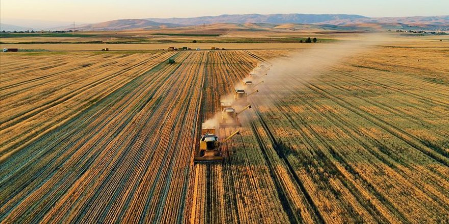 Tarımsal destek ödemeleri bugün hesaplara yatırılacak
