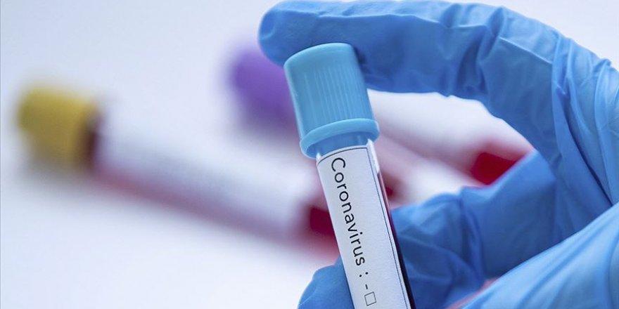 Mikrobiyoloji uzmanlarından koronavirüsle ilgili bilgilendirme için yeni internet sitesi