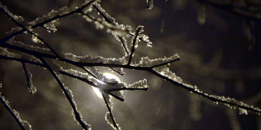 Ardahan gece yağan karla beyaza büründü