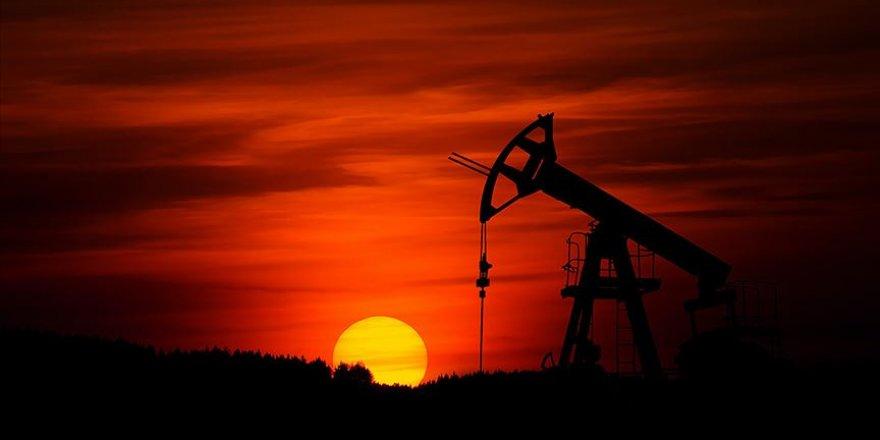 OPEC'in küresel petrol üretimi payı yüzde 39'a geriledi