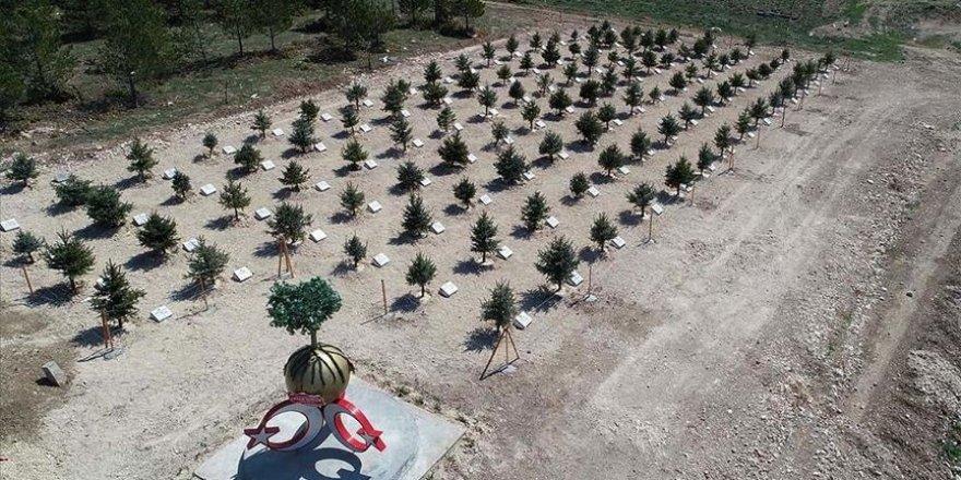 Bozkırın ortasında 'Orman Şehitleri Hatıra Ormanı' oluşturuldu