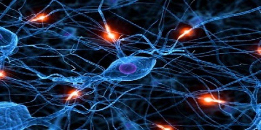 Dünyada nadir görülen epilepsi çeşidinin yeni bir genini teşhis etti