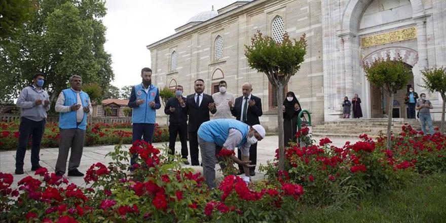 Camilere kavuşma sevinci: Yüzlerce şükür kurbanı kesildi