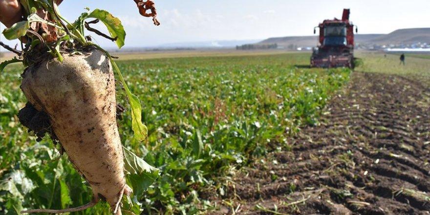 'Sözleşmeli tarım' ile kaliteli ürününün tüketiciye ulaştırılması amaçlanıyor