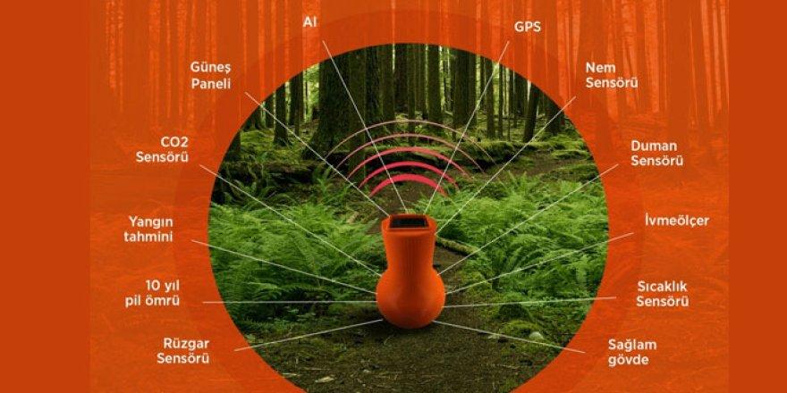 Akıllı orman kapsülü ile orman yangınlarının önüne geçilecek