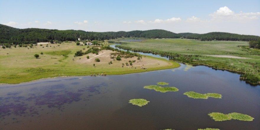 Yayla Gölü kesin korunacak alan ilan edildi