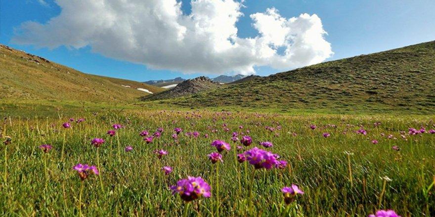 Geyik Dağı'nda dört mevsim bir arada yaşanıyor